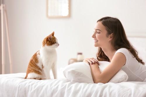 ベッドで女性と見つめ合う猫