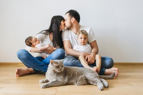 灰色猫、キスする夫婦と子ども