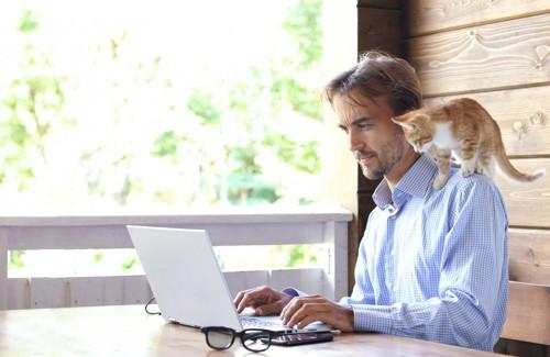 パソコンをする男性の肩に乗る猫