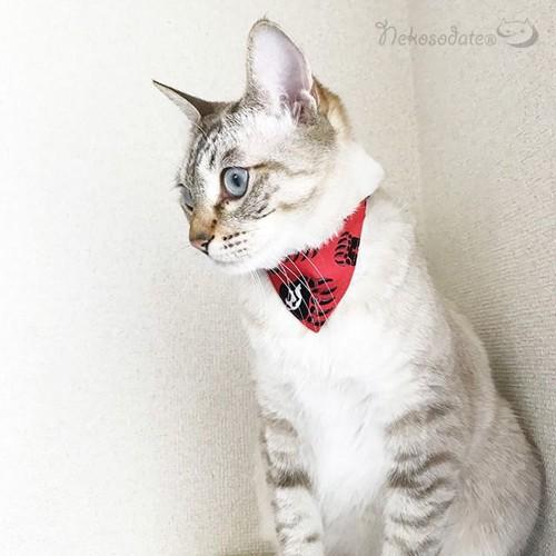 商品の赤いバンダナをつけた猫