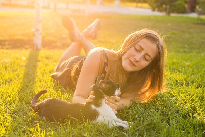 女性に撫でられる猫