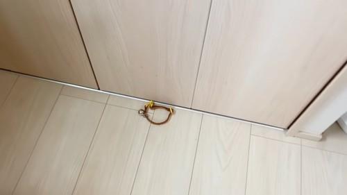 床に落ちている首輪