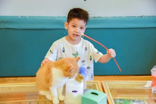 おもちゃを持つ少年と猫