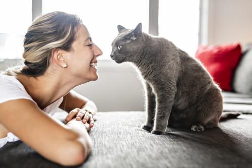 猫と見つめ合う女性