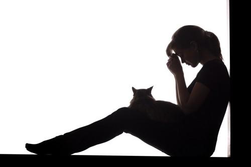 女性と猫のシルエット