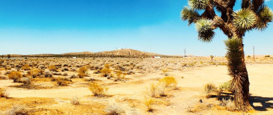 モハーベ砂漠