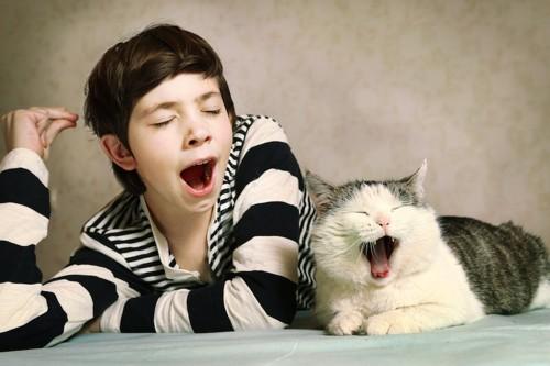 同時にあくびをする少年と猫