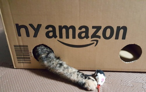namazon box