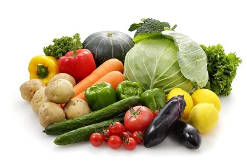 大量の野菜が並べられている