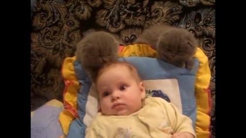 赤ちゃんの髪の毛を舐める