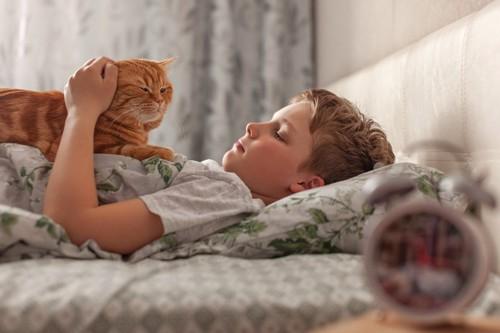少年の身体の上に乗る猫