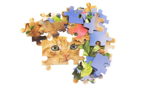 猫とパズル
