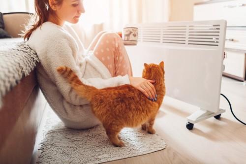 ファンヒーターのまえに座る女性と猫