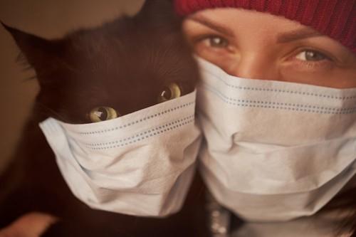マスクをする人と猫