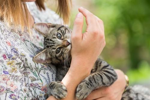 飼い主に抱かれて手に噛み付く猫