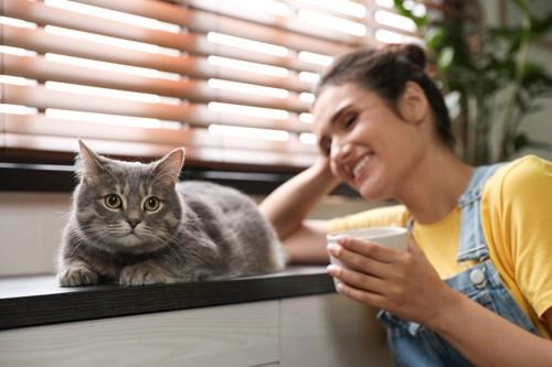 安心している猫とカップを持つ女性