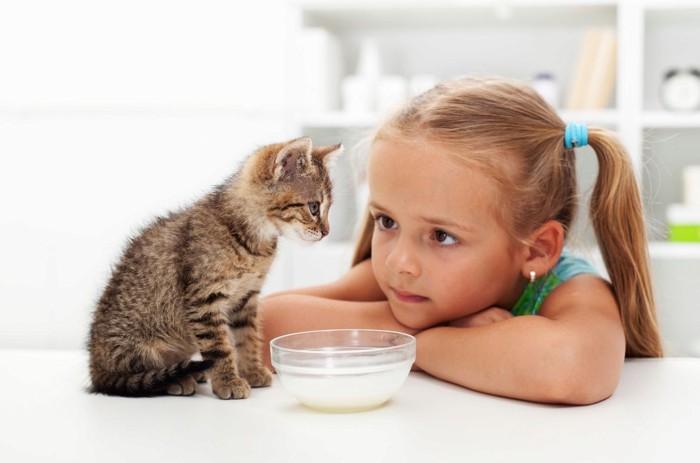 ミルクと猫と女の子