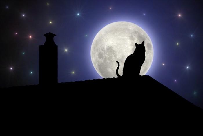 猫のシルエットと月