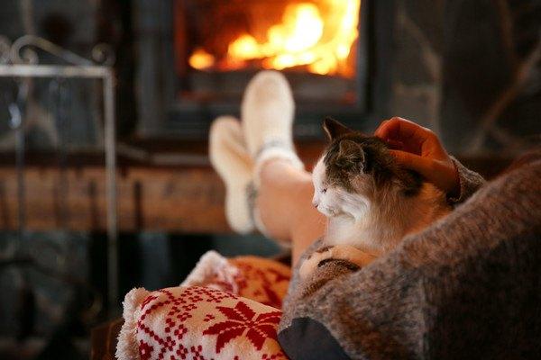 暖炉で暖まる人と猫