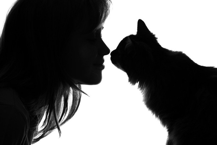 猫と女性のシルエット