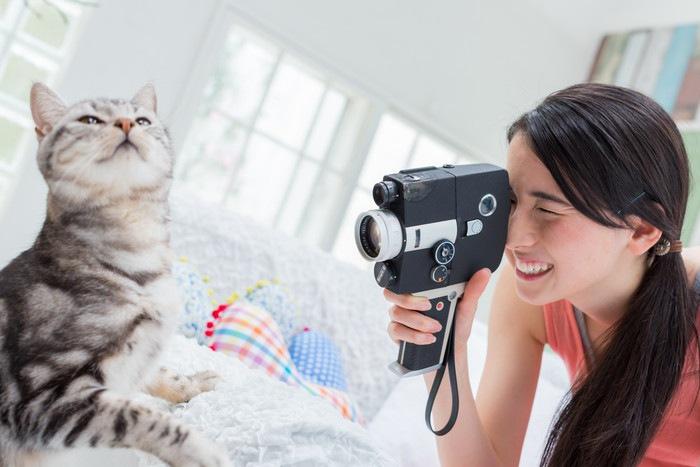 猫と猫を撮影する女性の写真