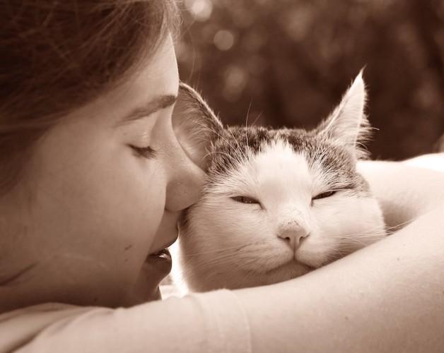 猫を抱きしめる女の子