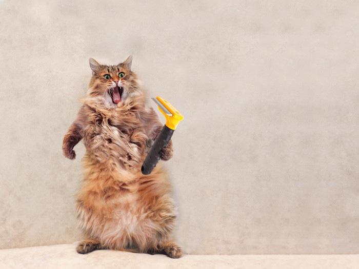 ファーミネーター持って怒っている猫