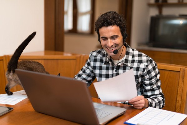 パソコンの前にいる男性と猫の尻尾