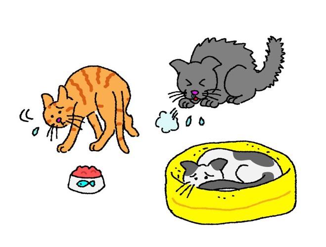 病気の猫のイラスト
