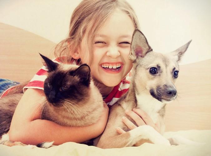 犬と猫を抱きしめて寝転ぶ少女