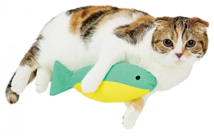 魚のけりぐるみを抱えている猫