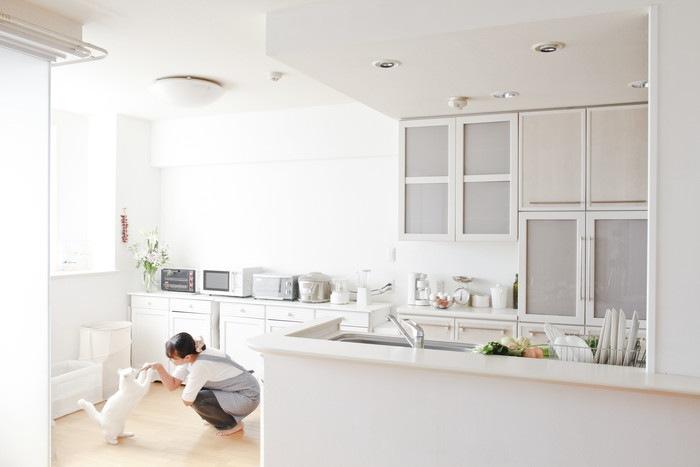 猫と女性と綺麗なキッチン