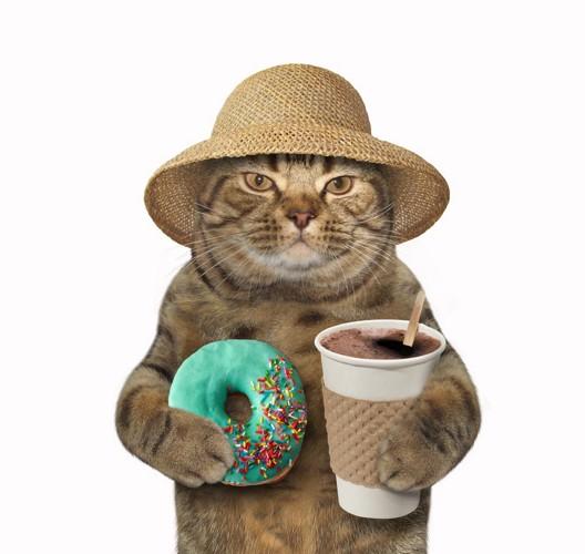 ドーナッツを持つ猫