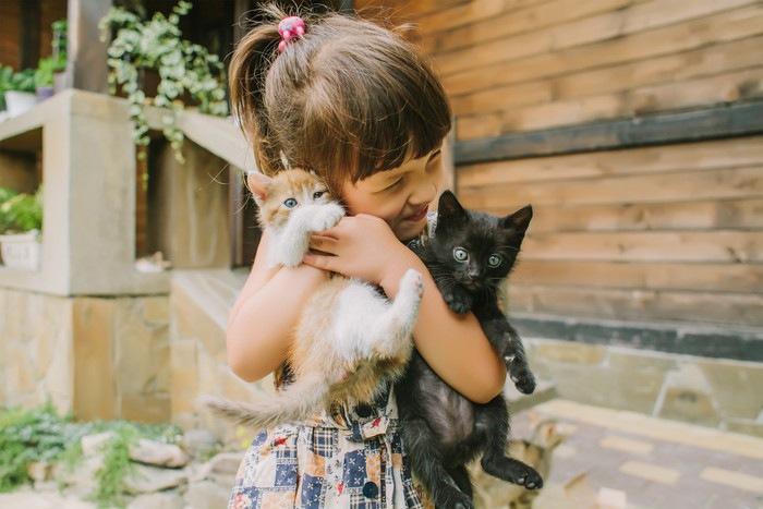 2匹の猫と女の子