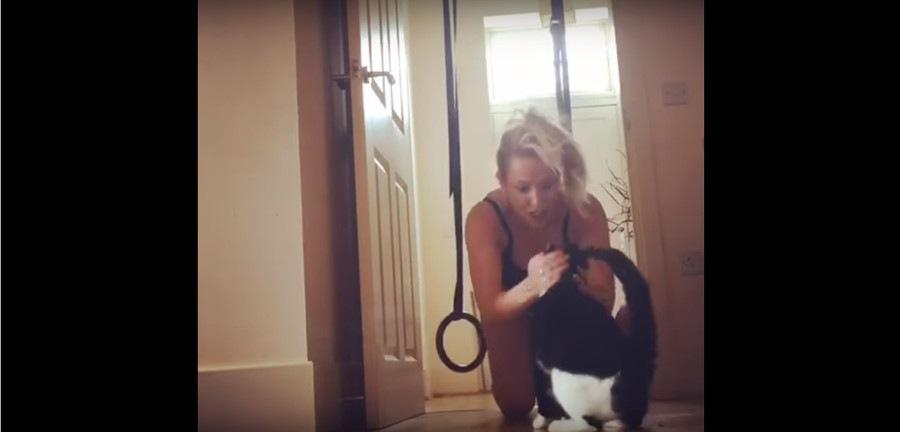 猫をナデナデする女性