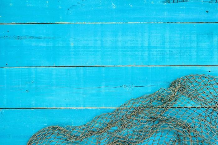 ブルーの壁と網