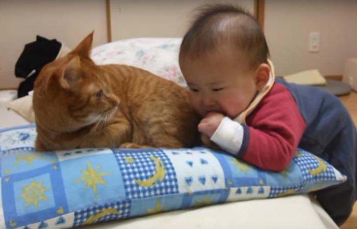 しっぽを握ったままの赤ちゃん