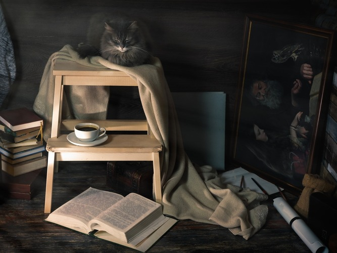 猫とアトリエ