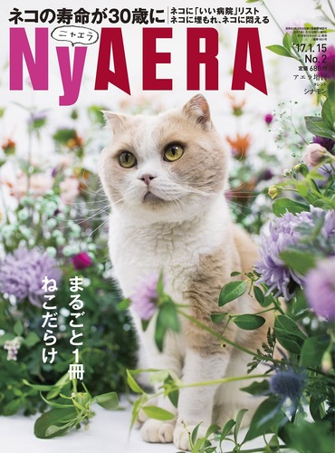 NyAERA表紙