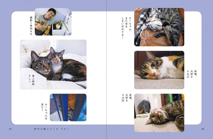 田中さん猫スナップ