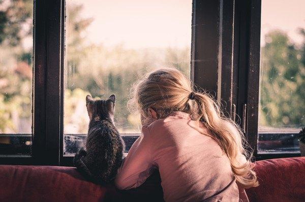 窓辺の猫と女の子