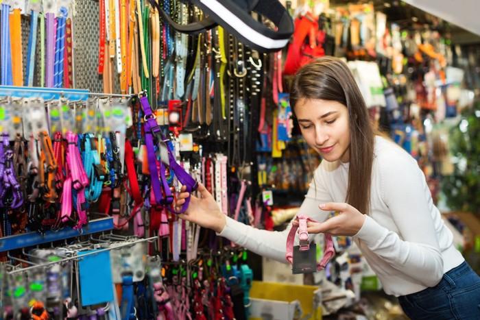 お店でハーネスを選ぶ女性