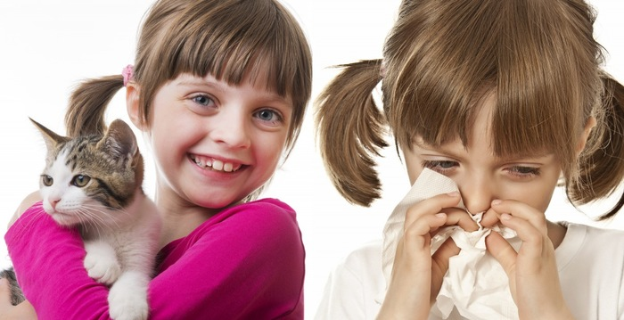猫アレルギーの女の子と猫を抱える女の子