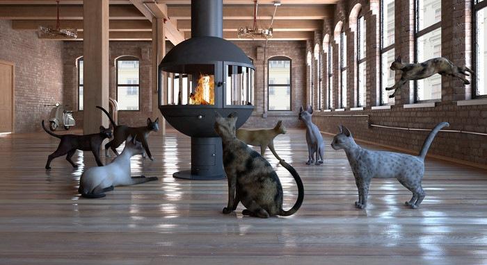 暖房に集まる猫