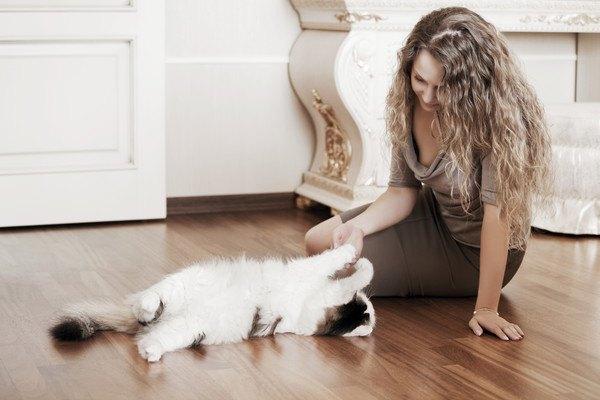仰向けで女性を見る猫