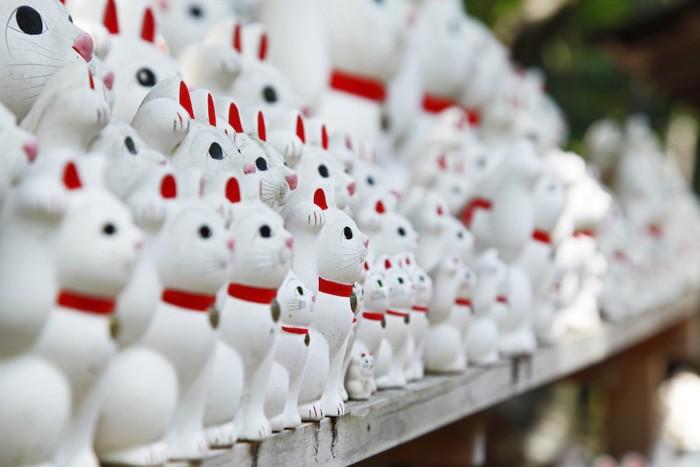 横に並んだたくさんの招き猫