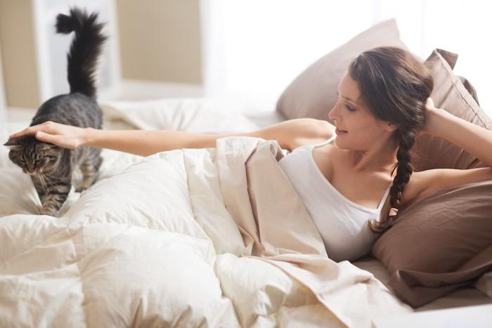 ベットの上を歩く猫を撫でる女性