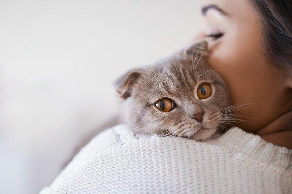 猫に頰をつけている人