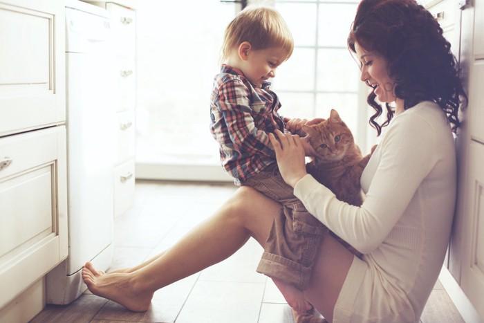 人間の親子と猫