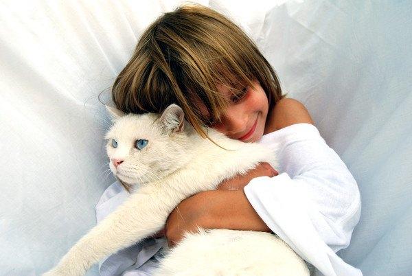 白猫を抱き締める女の子
